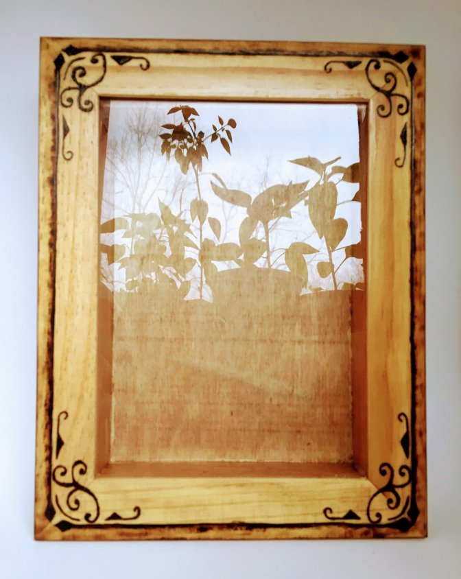 New Rustic Hand Burned Shadow Box Picture Frame! Custom Orders Accepted!